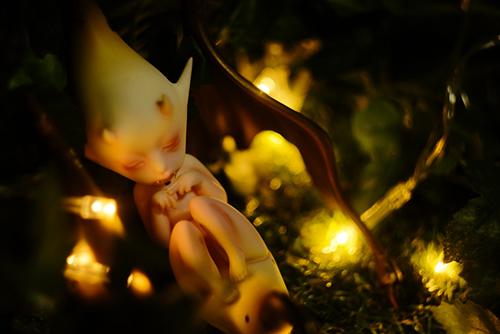 DOLLchateau・William AのRêve。妖しい雰囲気が漂う、あやかしの眠る森。