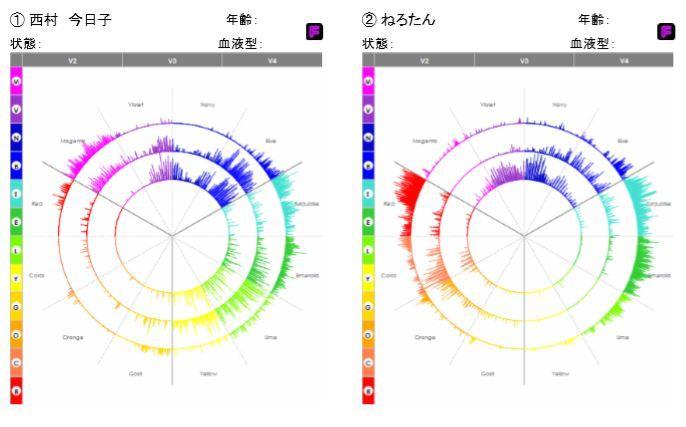 セラピスト声紋PDF