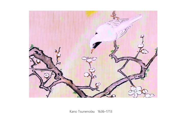 Kano Tsunenobu 0215 1135