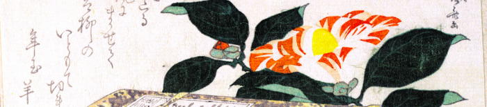 Ryuryukyo Shinsai 0228 1010 2