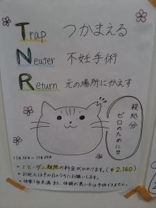 TNRポスター③