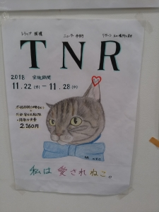 TNRポスター②