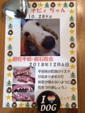 IMG_21お78.jpg
