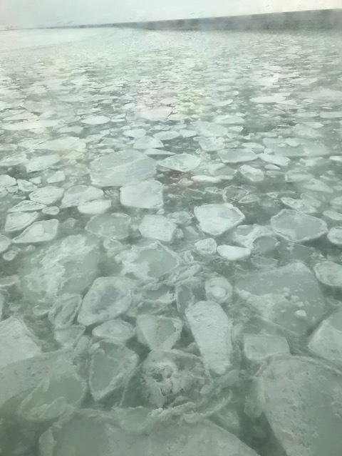 319流氷