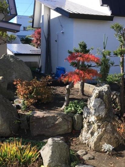 秋の庭2018