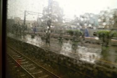 IMG_5174 雨