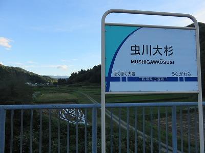 yukidaruma05.jpg