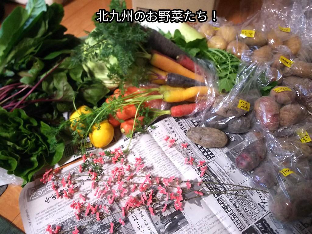 北九州のお野菜たち!