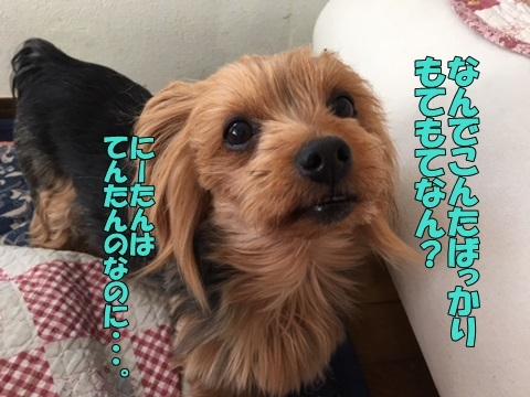 image119021501.jpeg