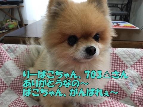 image719020901.jpeg