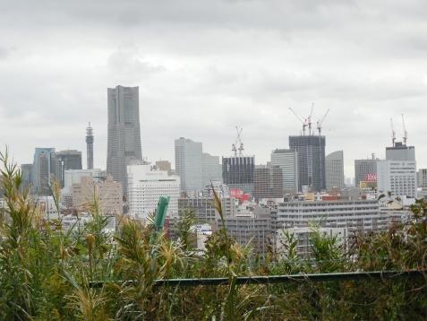 唐沢公園からの眺め@横浜市南区
