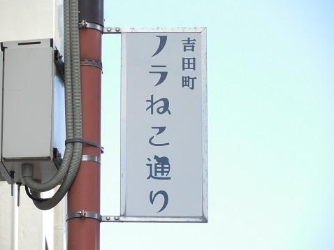 吉田町ノラねこ通り@横浜市中区a