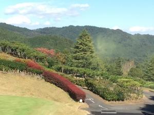 花粉ゴルフ