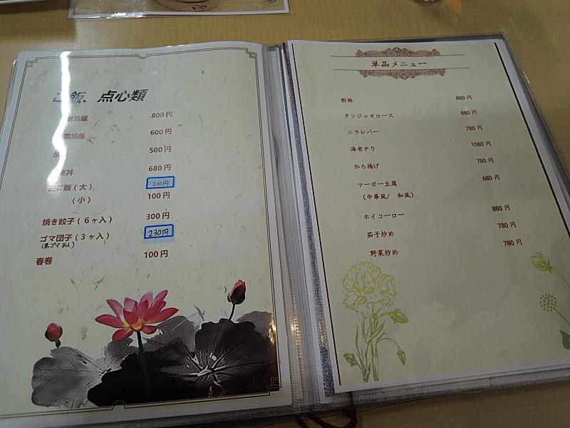 bDSCN4521.jpg
