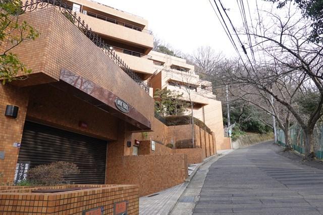 20190224 保久良神社(梅林) (11)