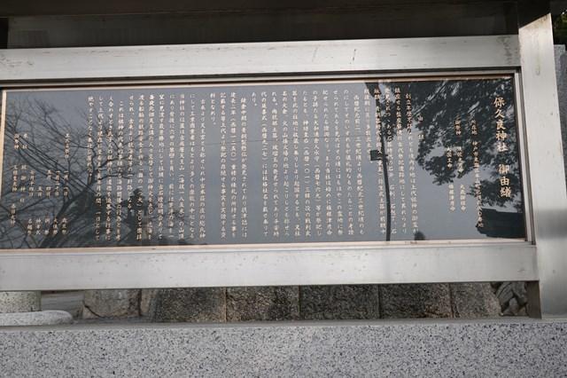20190224 保久良神社(梅林) (36)