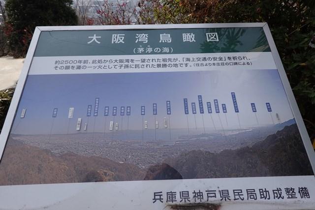 20190224 保久良神社(梅林) (45)