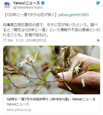 screenshot-01-57-02-1549040222186-186.jpg