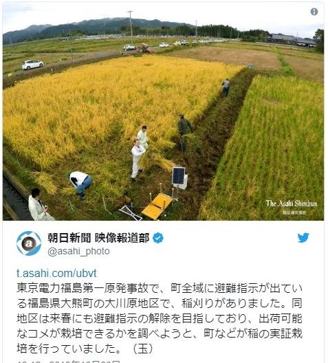 【福島】原発事故の避難指示地区で「稲刈り」…今後、出荷可能か実証