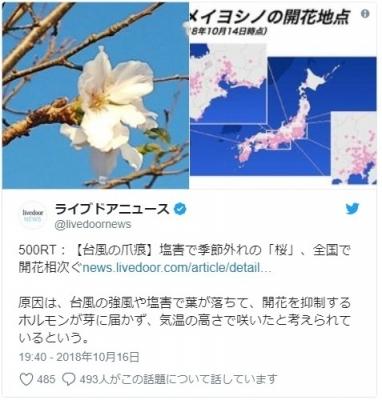 screenshot-04-49-20-1539719360431-431.jpg