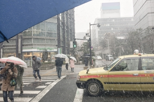tokyo_snow35745.jpg