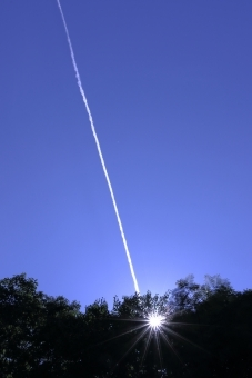 ufo638767.jpg