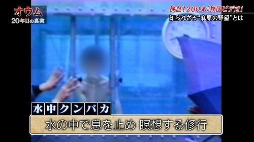 chuin-no-hana08.jpg