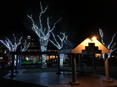 長野県諏訪湖湖畔イルミネーション