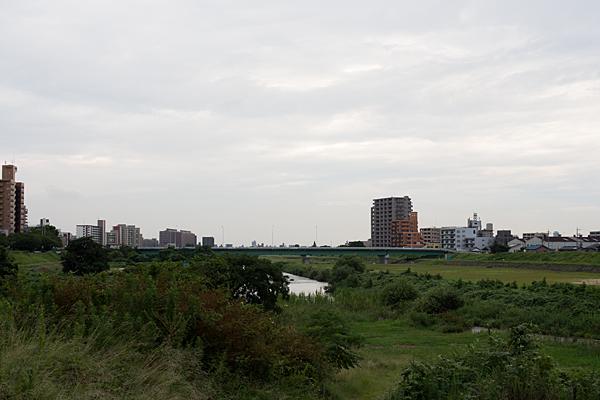 矢田川風景夏