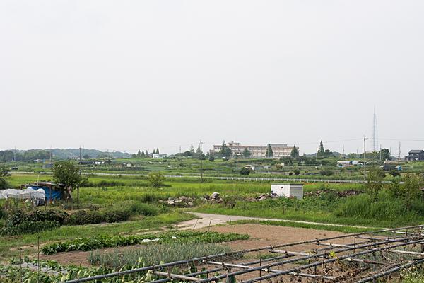 田んぼと小学校