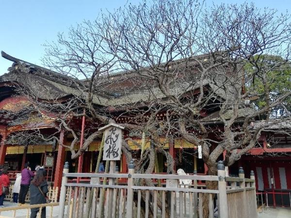 Dazaifutenmangu_007_org.jpg