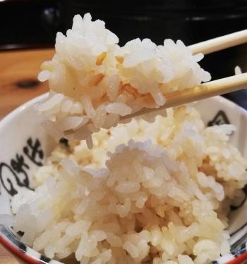 FuseGinji_011_org.jpg
