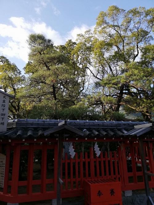 Hakozakigu_003_org.jpg