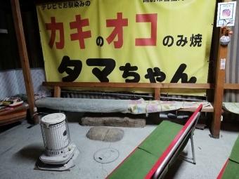 HinaseTamachan_010_org.jpg