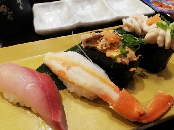 MusashimaruToyokawa_002_org.jpg