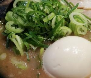 YamatokoriyamaGamusyara_004_org.jpg