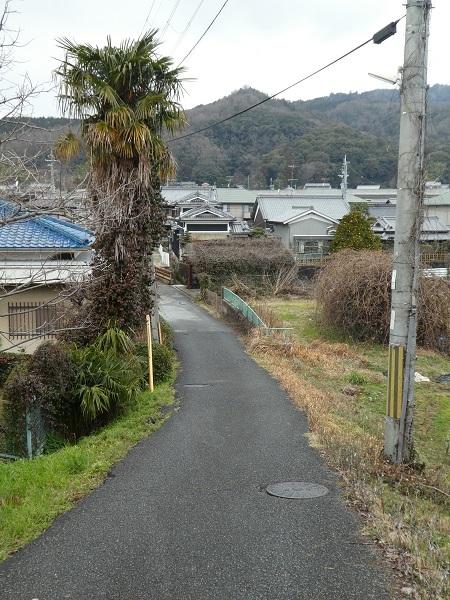 大和朝倉駅から北へ