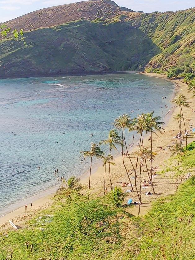 hawai4.jpg