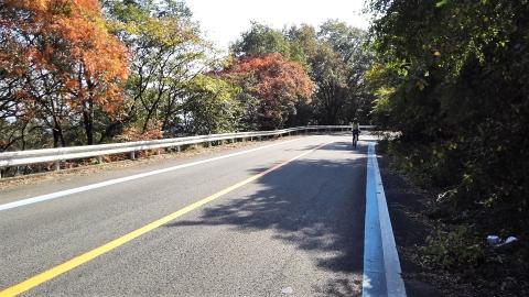 やっと車の多い国道沿いを抜けのんびり山道に。少し紅葉もあります。