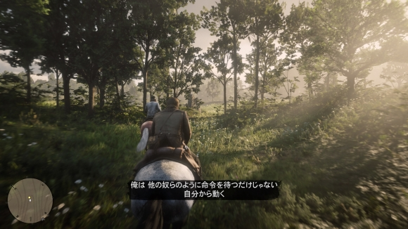 Red Dead Redemption 2_20181111104649