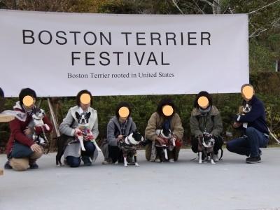 BOSTON TERRIER FESTIVAL 2018