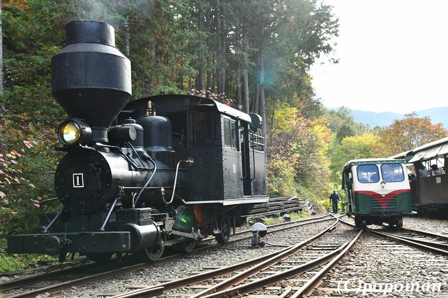 DSC_6773 - コピー2018 10 14 林鉄モーターカー 871 580 popoman