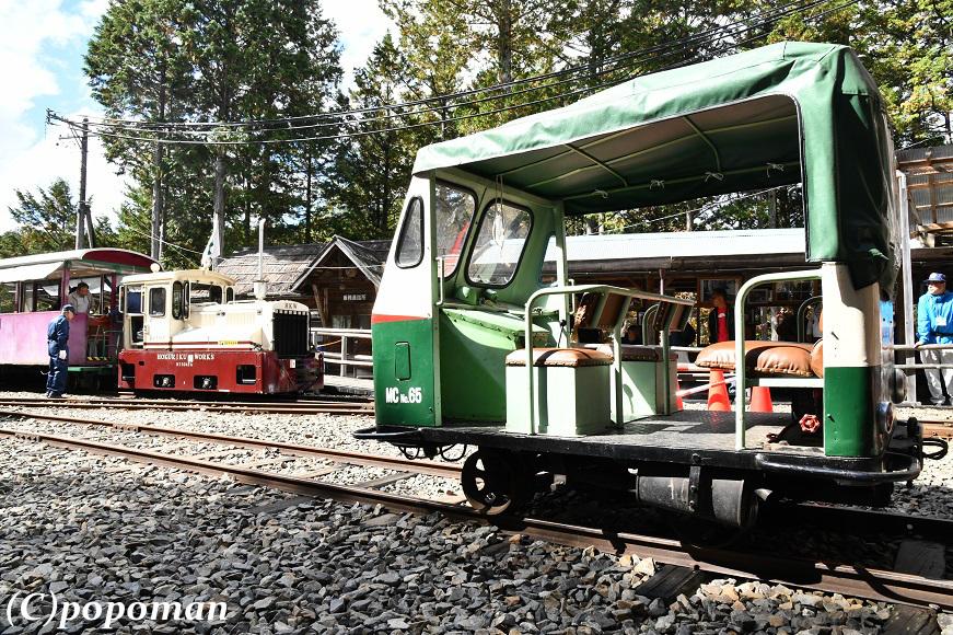 DSC_6596 - コピー2018 10 14 赤沢森林鉄道 871 580 popoman
