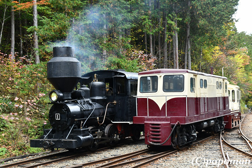DSC_6700 - コピー2018 10 14 赤沢森林鉄道 871 580 popoman
