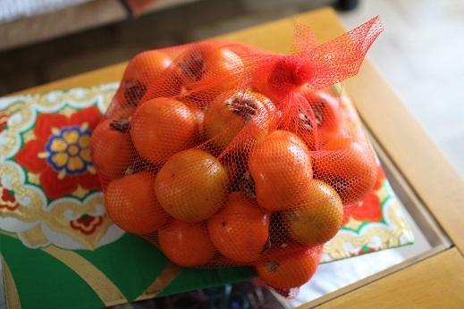 1811干し柿 (1)