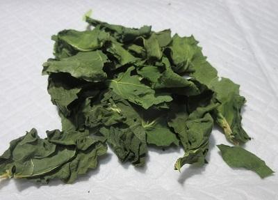broccoly.jpg