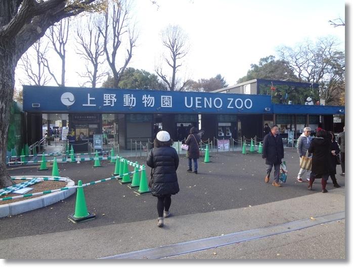 上野動物園DSC02111
