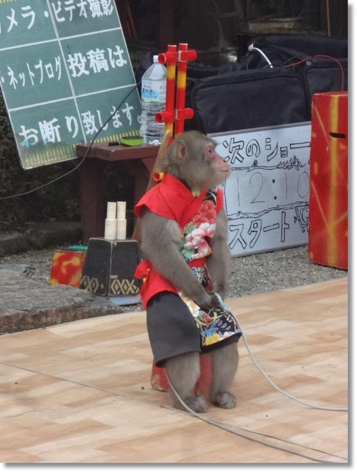 笠間稲荷DSC02200