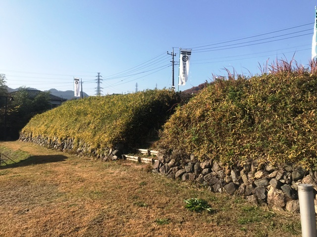 平井城 (32)