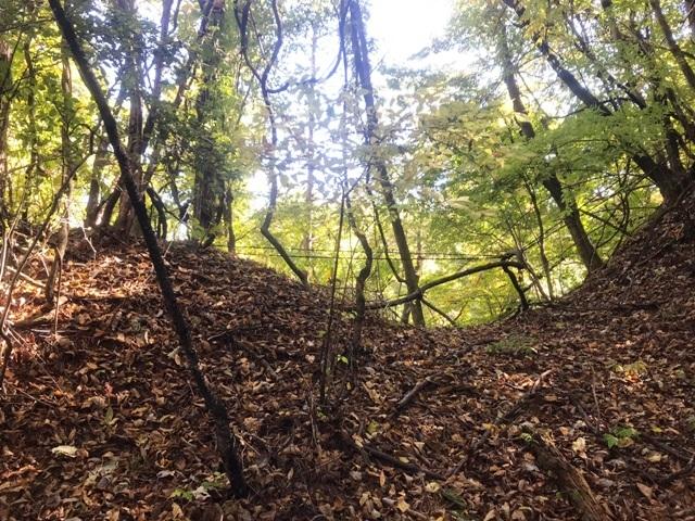金毘羅山の砦 (16)